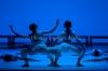 ballet_sodre_leb_02